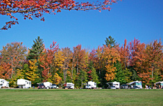 Campsites at Peppermint Park Camping Resort