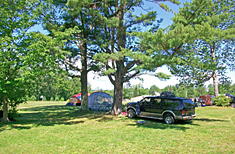 Tentsites at Peppermint Park Camping Resort
